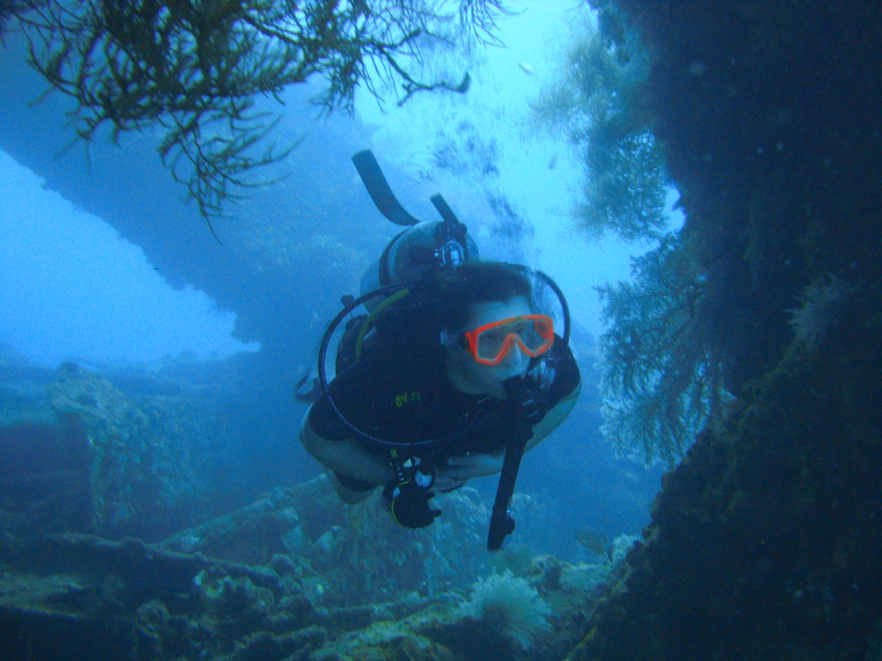 My first scuba diving experience bali eat drink travel scuba diving bali xflitez Images
