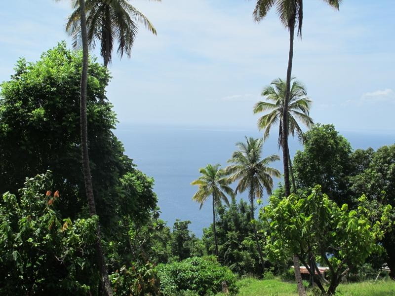 Morne Coubaril Estate, St. Lucia