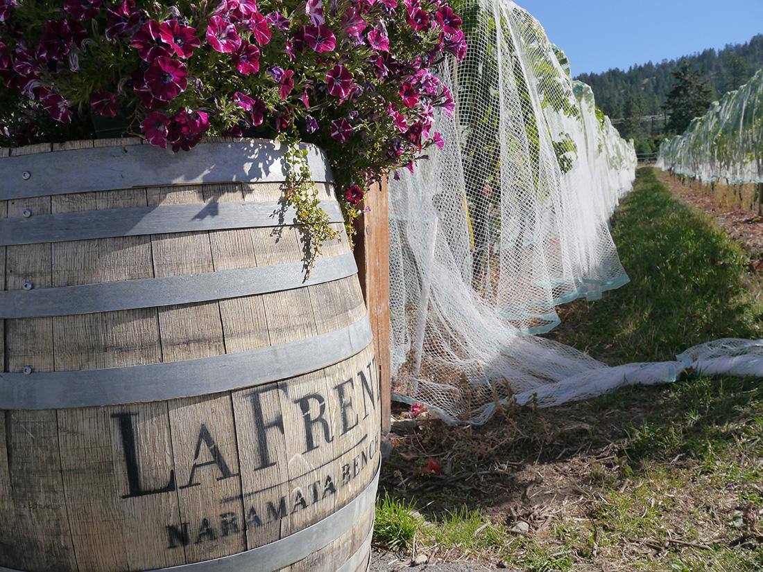 La Frenz Winery, Okanagan Valley