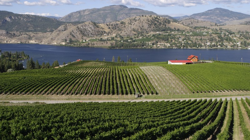 Okanagan Valley Wineries, British Columbia
