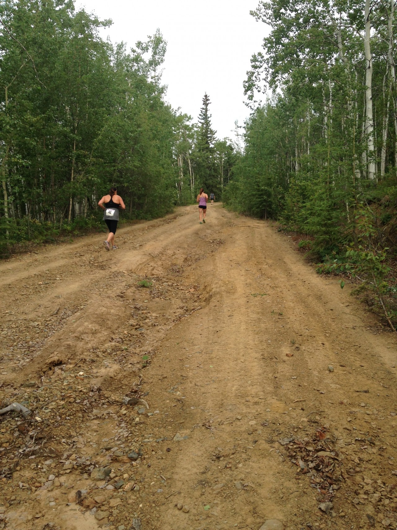 Calf Cramper, Dawson City Midnight Dome Run