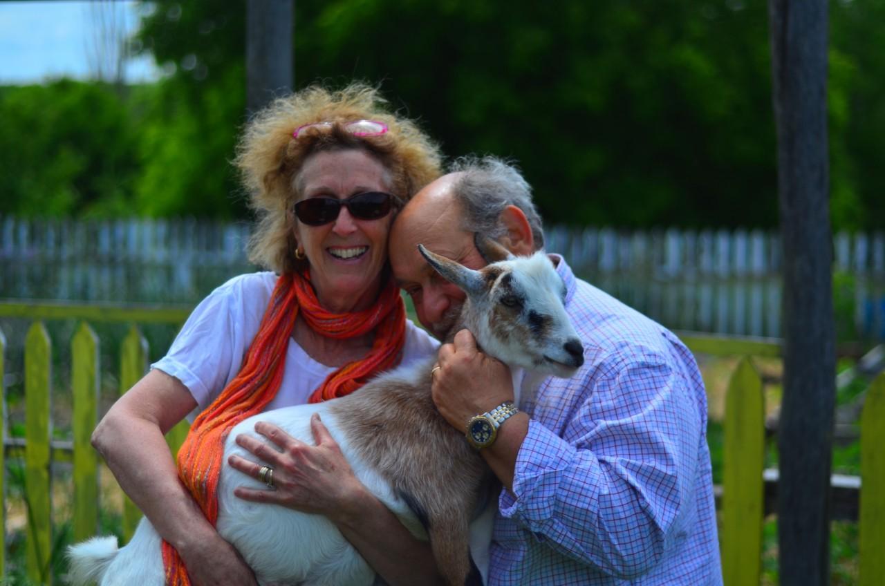 Haute Goat Debbie Shain