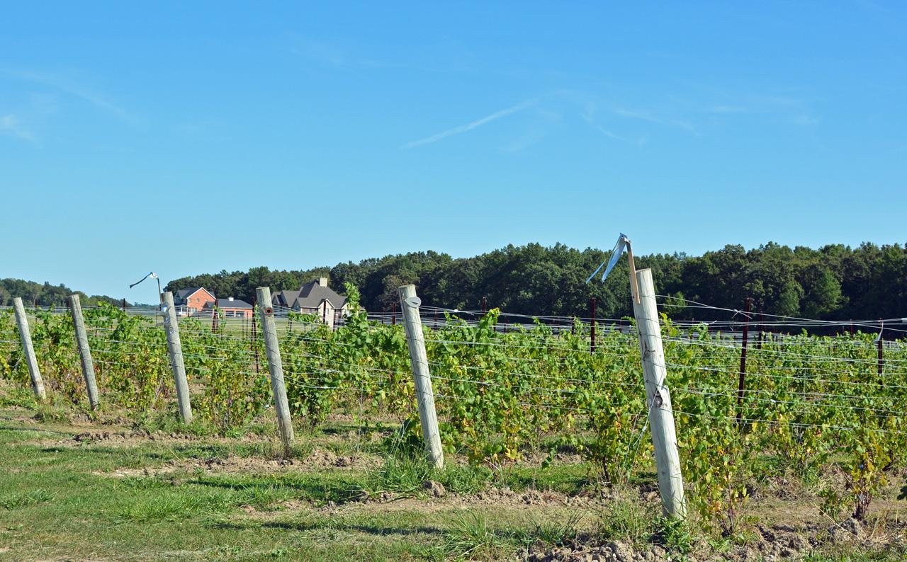 1280 Winery