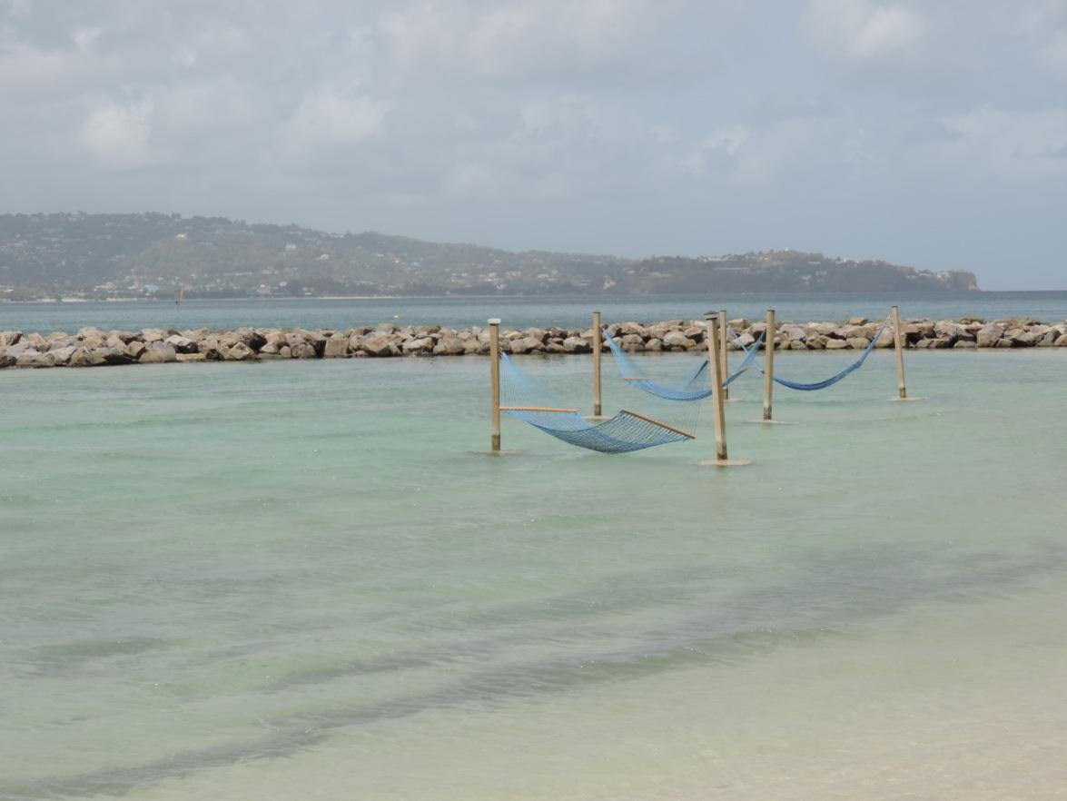 8 hammocks