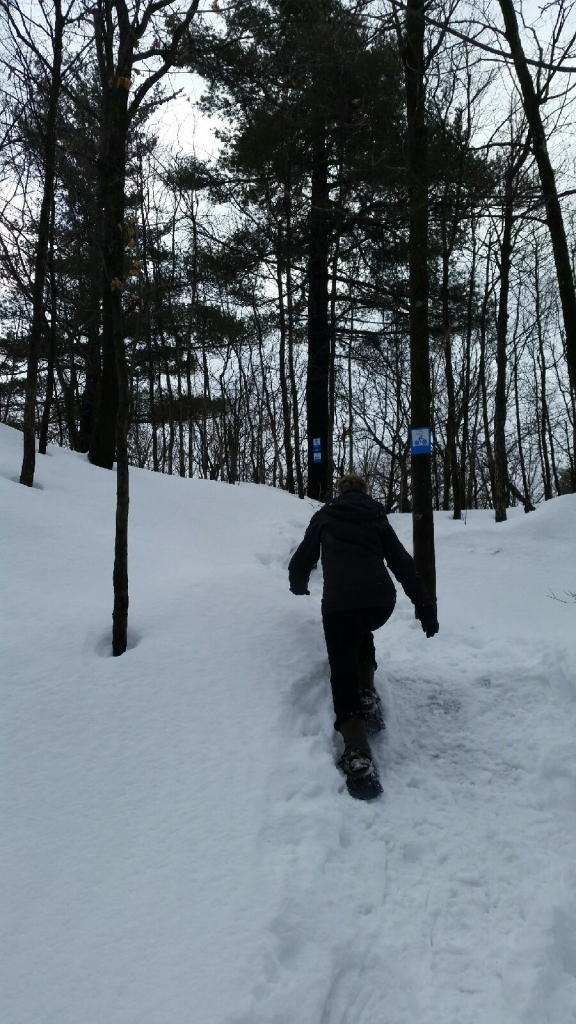 Hill Climbs on Snowshoe in Gatineau Park
