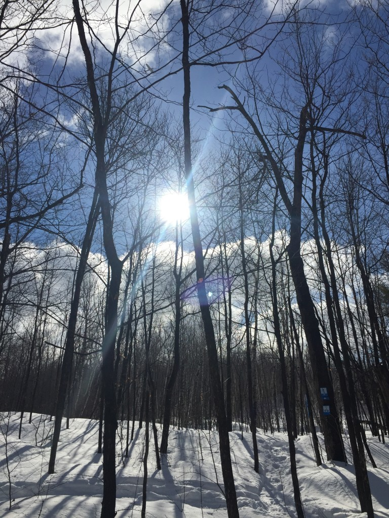 Out for a Snowshoe in Gatineau Park