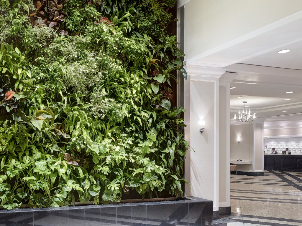 Living Wall in the Lobby. Photo by Chelsea Hotel