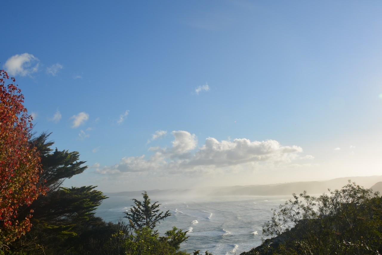 Raglan New Zealand