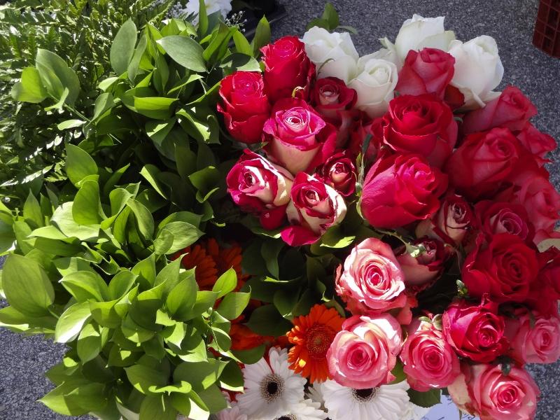 flowers (800x600)