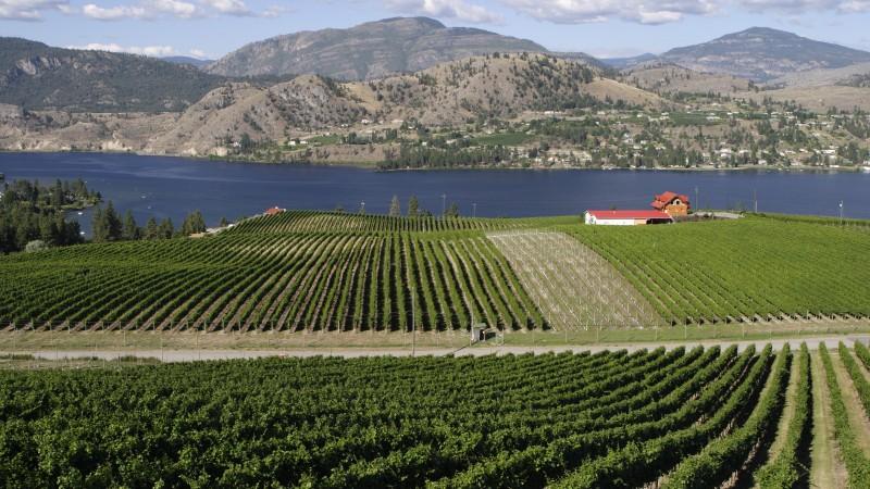 Okanagan Valley Wineries, British Columbia